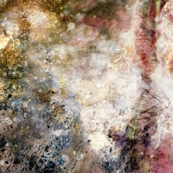 digital fine art printmaking by ellen scobie