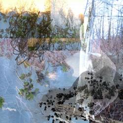 ellen scobie fine art photography, trees, rocks, landscape, abstract, mixed media, fine art photography, mixed media photo-based, mixed media digital art, mixed media digital photographs, photo-based art