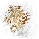 conversation-in-the-garden-II-ellen-scobie-landscape-printmaking