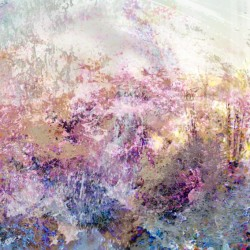 pink garden abstract landscape, landscape collection, impressionist fine art, digital mixed media print of garden of pink flowers by ellen scobie
