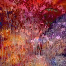 abstract garden image in red, orange, violet, and pink