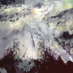 Abstract photography of forest, digital mixed media of forest and trees, clouds, sky, purple, grey, silver, dreamy, clouds, texture, mixed media, fine art photography, mixed media photo-based, mixed media digital art, mixed media digital photographs, photo-based art